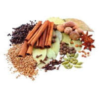 Indian Traditional Spices